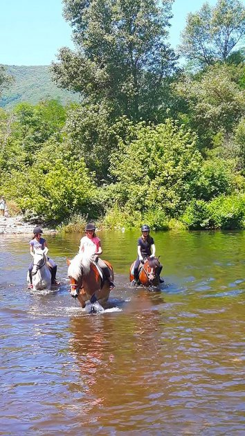 rando cheval lourouchetou